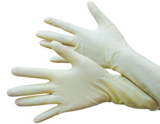 Vinyl / Latex Gloves